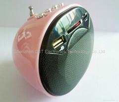 FM radio Mini Digital Sound Speaker