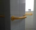LW-NRL-1 Bathroom Grab Bar