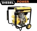 Diesel cast iron pump