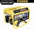 gasoline power generators