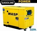 10,000Watts Gas Portable Generators