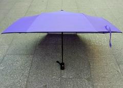 全自動開收廣告雨傘 自動開收廣告雨傘定做
