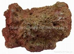 仿真水族鱼缸装饰珊瑚石