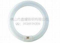 飛利浦 TLE 22-40W環形熒光燈管
