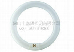 飞利浦 TLE 22-40W环形荧光灯管
