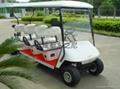 成都東之尼6座高爾夫球車
