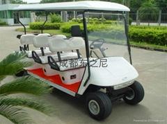 成都东之尼6座高尔夫球车