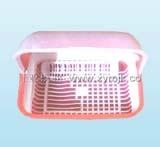 fresh box mould 2