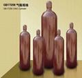 高壓氣瓶天然氣鋼瓶組 3