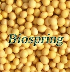 Soybean Isoflavones