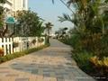 井字型草坪磚 2