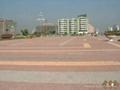 井字型草坪磚 5