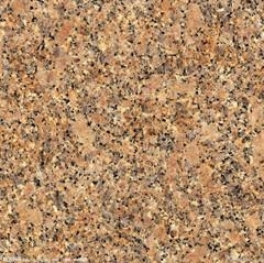 Carioco Gold marble