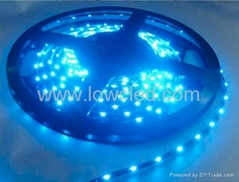 SMD3528 led strip light IP67(LL-FSLW-3528-WW)