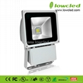 High power 90W Bridgelux chip MEAN WELL