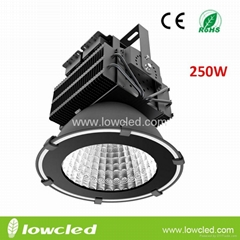 NEW 250W high power IP65