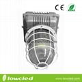 30W IP65 Bridgelux chipset LED explosion