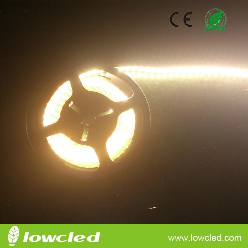 SMD3014 72W IP20 led strip light with CE, ROHS(LL-FSLU-3014-WW-120)