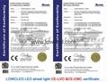 IP65 30W/40W/50W/60W CREE, Bridgelux MEAN WELL led street light with CE, ROHS