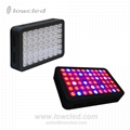 Full Spectrum 300W/600W/900W/1200W led grow light kit good for medical plant