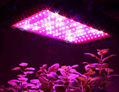 High quality greenhouse100W LED Grow LIght fixture for vegetbales/fruit/Flower