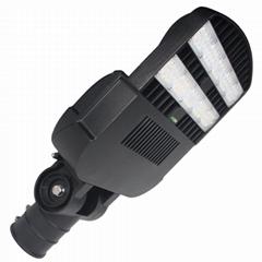 100W LED Landscape Lighting