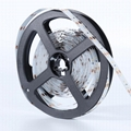 SMD2216 CRI RA90 60LEDs/M, 120LEDs/M, 240LEDs/M, 300LEDs/M led strip light