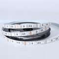12V 24V 4in1 SMD5050 RGBW Led Flexible Strip Light