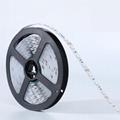 12V 24V 4in1 SMD5050 RGBW Led Flexible Strip Light