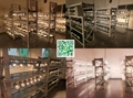 Commercial 2 3Wires 234 lines art gallery COB 30w 40w led track lighting 20w 25w 10