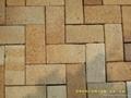黃色米黃色陶土燒結磚廣場磚 2