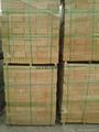 黃色米黃色陶土燒結磚廣場磚 5