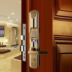 Waterproof Advanced Network Biometric Fingerprint Door Lock