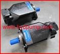 Denison T6C T6D T6E T7E pump