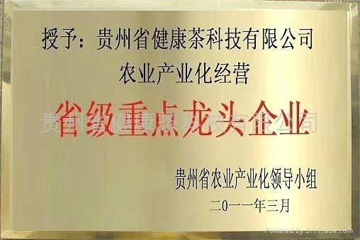 貴州省健康茶科技有限公司獲《第五批農業產業化經營省級重點龍頭企業》