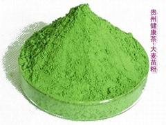 大麥苗粉 大麥若葉青汁 大麥嫩葉青汁粉 超微粉