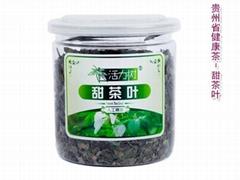活力樹 甜茶葉