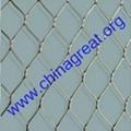 Protect bird mesh