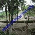 Protect bird mesh 2