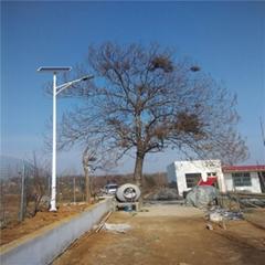 GZH1010-MPPT直流變頻鄭州led路燈