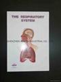3D EMBOSSED MEDICAL NOTEBOOK 4