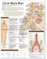 腰痛---三维立体PS/PET
