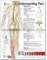 了解疼痛症--三維立體PS/P