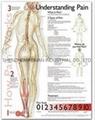 了解疼痛症--三维立体PS/P
