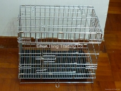 Chrome coating dog cage