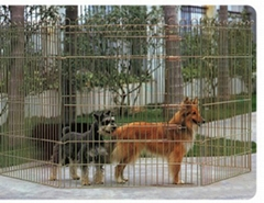 六件装围栏
