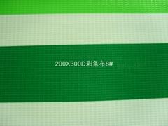 200X300D彩条帐篷夹网布