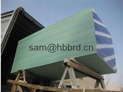 Ceiling Plasterboard