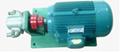 DHB系列點火油泵