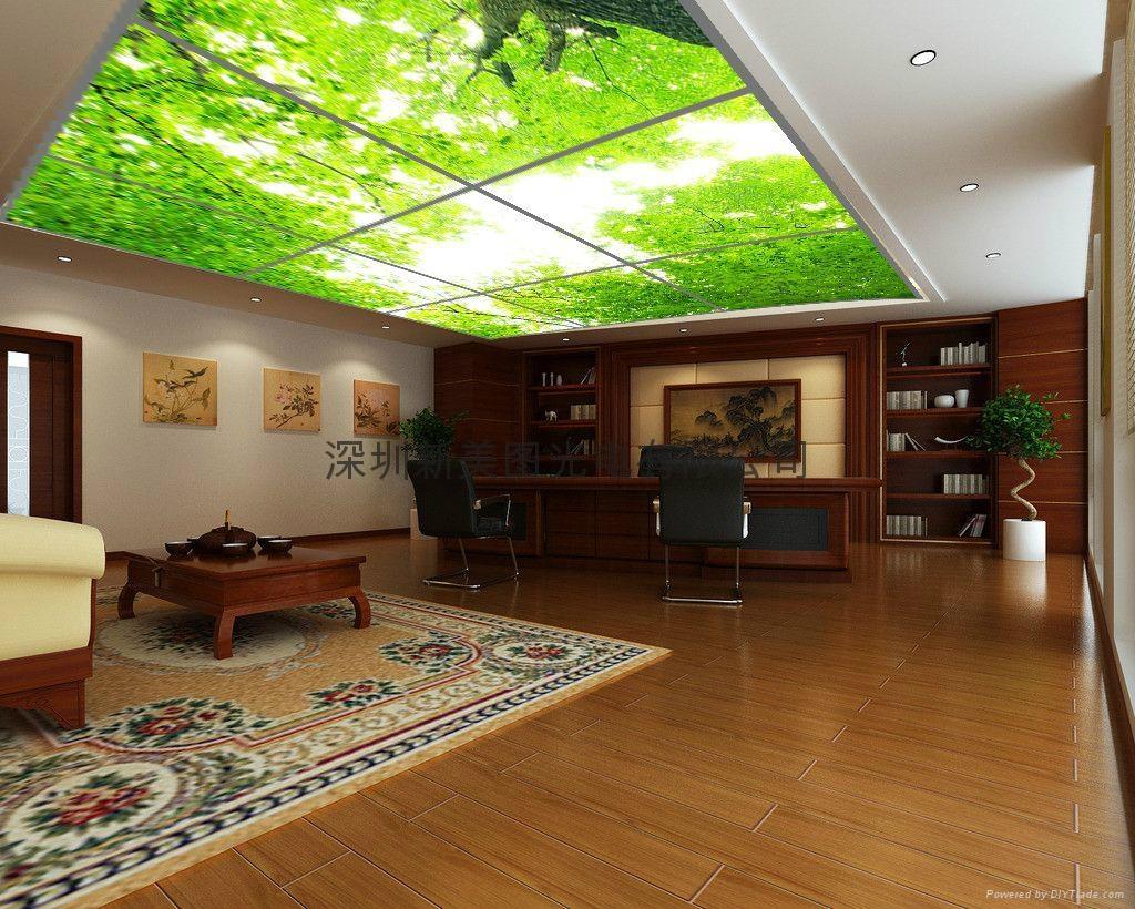 LED藝朮平板天花 5